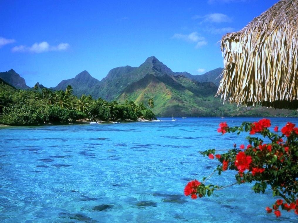 025844_1_4993_hawaii